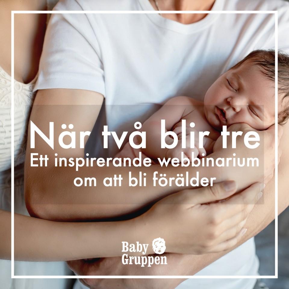 Samarbetspartner till Sunt Fokus, Barnmorsekgruppen Öresund, Babygruppen